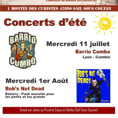 Concerts d'été à la Canaille